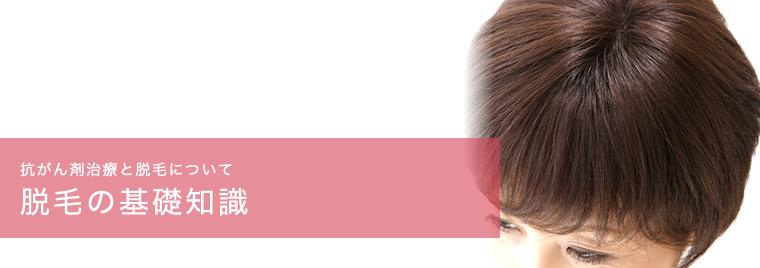 脱毛の基礎知識